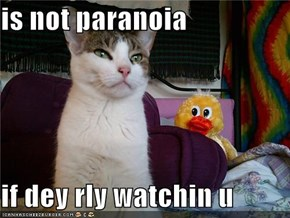 is not paranoia  if dey rly watchin u