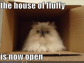 the house of fluffy   is now open