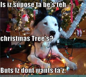 Is iz supose ta be's teh  christmas Tree's?  Buts Iz dont wants ta'z.