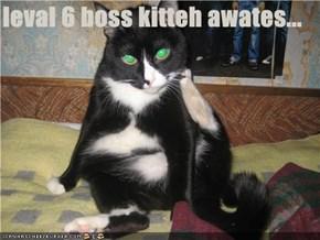 leval 6 boss kitteh awates...