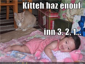 Kitteh haz enouf inn 3, 2, 1...
