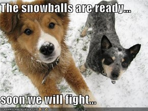 The snowballs are ready...  soon we will fight...