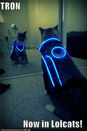 TRON  Now in Lolcats!