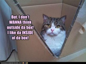 But, I don't WANNA think outside da box! I like da INSIDE of da box!