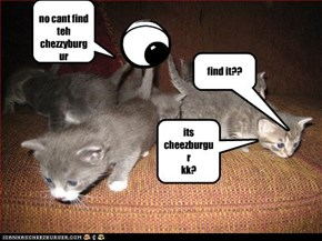 eye and kitteh 1:the hunt for cheezburger