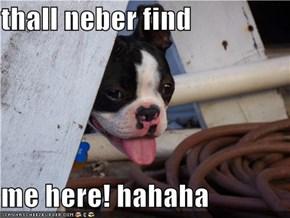 thall neber find   me here! hahaha