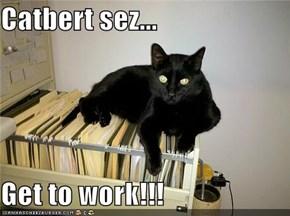 Catbert sez...  Get to work!!!