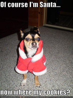 Of course I'm Santa...  now where my cookies?