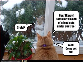 Hey, Skippy!  Santa left u a can of mixed nuts under our tree!