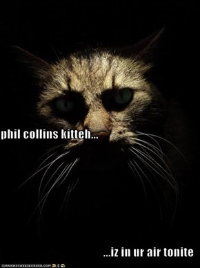 phil collins kitteh... ...iz in ur air tonite