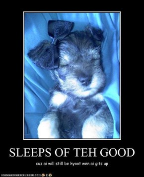 SLEEPS OF TEH GOOD