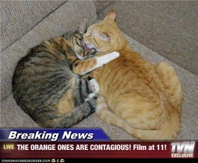 Breaking News - THE ORANGE ONES ARE CONTAGIOUS! Film at 11!