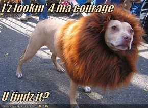 I'z lookin' 4 ma courage  U findz it?