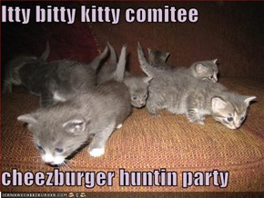 Itty bitty kitty comitee  cheezburger huntin party