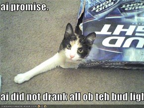 ai promise.  ai did not drank all ob teh bud light!