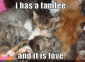 i has a famlee  and it is love