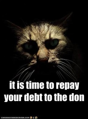 it is time to repay your debt to the don