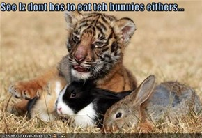 See Iz dont has to eat teh bunnies eithers...