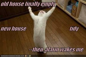 old house finally empty new house                                           tidy --then, alarm wakes me