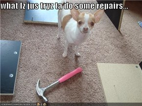 what Iz jus tryz ta do some repairs...