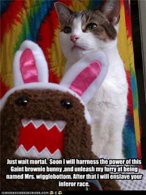 Just wait mortal.  Soon I will harrness the power of this Gaint brownie bunny ,and unleash my furry at being named Mrs. wigglebottom. After that I will enslave your inferor race.