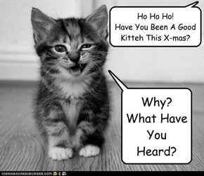 Ho Ho Ho!   Have You Been A Good Kitteh This X-mas?