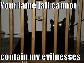 Your lame jail cannot  contain my evilnesses