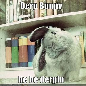 Derp Bunny  he be derpin