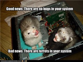 Good news: There are no bugs in your system