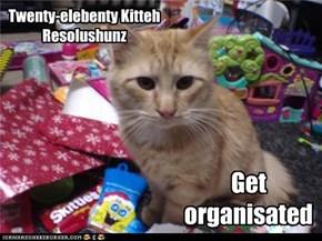 Twenty-elebenty Kitteh Resolushunz