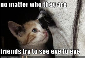 no matter who they are  friends try to see eye to eye