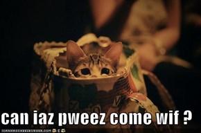 can iaz pweez come wif ?