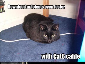 Download ur lolcats even faster
