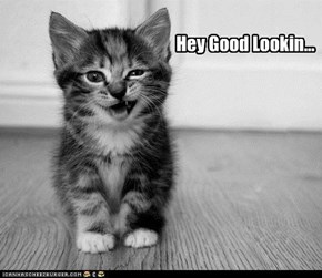 Hey Good Lookin...