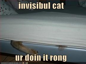 invisibul cat  ur doin it rong