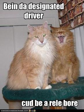 Bein da designated driver