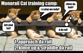 Monorail Cat training camp: