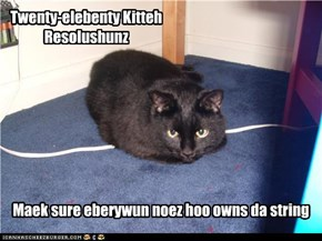 Twenty-elebenty Kitteh Resolushunz
