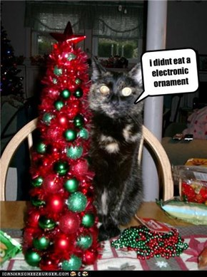 i didnt eat a electronic ornament
