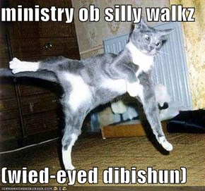 ministry ob silly walkz  (wied-eyed dibishun)