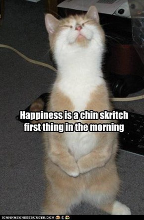 Happiness is a chin skritch first thing in the morning