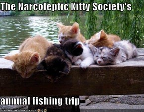 The Narcoleptic Kitty Society's  annual fishing trip