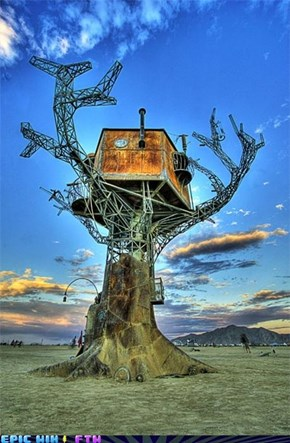 Did Not Know There Were Steampunk Trees...