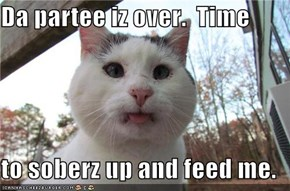 Da partee iz over.  Time  to soberz up and feed me.