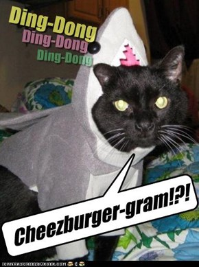 Cheezburger-gram!?!