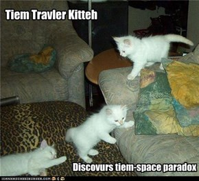 Tiem Travler Kitteh