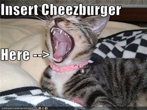 Insert Cheezburger  Here -->