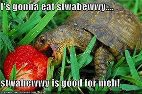 I's gonna eat stwabewwy....  stwabewwy is good for meh!