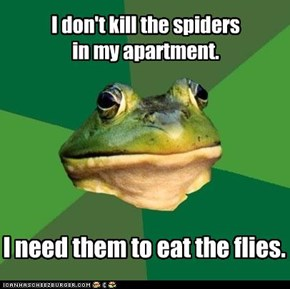 I don't kill the spiders  in my apartment.