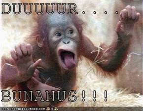 DUUUUUR....  BUNANUS!!!